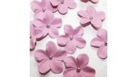 Alyvinės gėlės su sidabriniais viduriukais