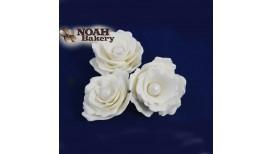 Baltos gėlės su perlo viduriu