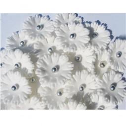 Baltos spalvos gėlytės  ''Sweet William'' su sidabriniais viduriukais