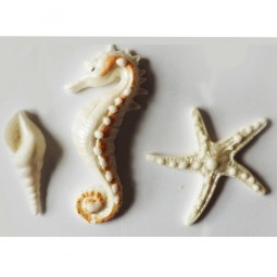White SeaShell, Seahorse and Starfish