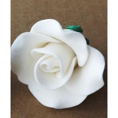 Baltos spalvos vidutinė rožė
