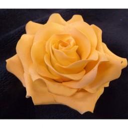 Didelė persikinės spalvos rožė su vielute