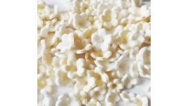 Dramblio kaulo, baltos spalvos gėlytės