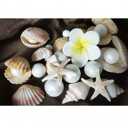 Ivory and pink seashells, pearls and frangipania (plumeria)