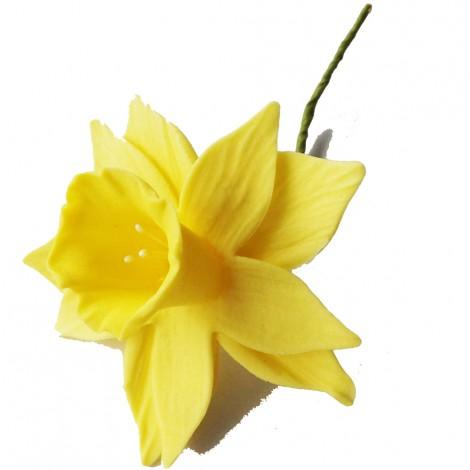 Geltonos spalvos vidutinis narcizas