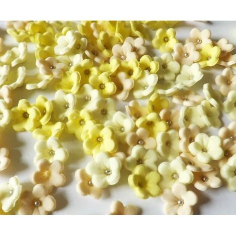 Geltonų atspalvių gėlytės su sidabriniais viduriukais