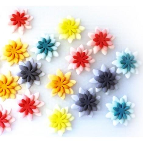 Įvairių spalvų gėlės su atspalviais