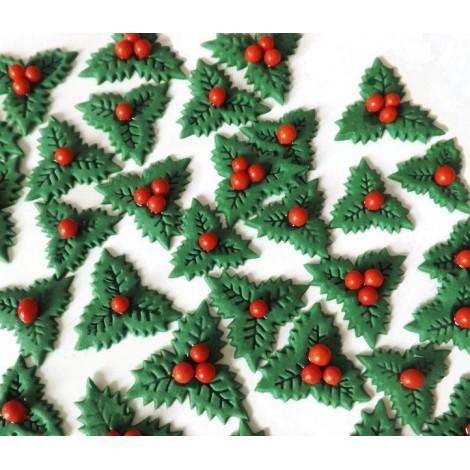 Kalėdinis rinkinys su bugienis lapais ir raudonomis uogomis