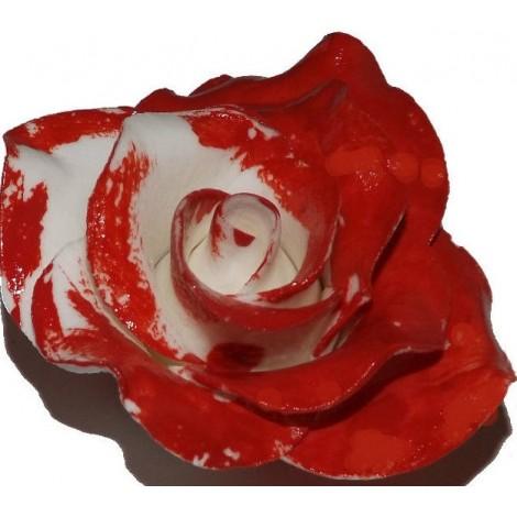 """Vidutinė raudonai nudažyta rožė """"Alisa stebuklų šalyje"""""""