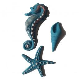 Mėlynos spalvos jūros kriauklė, arkliukas ir žvaigždė