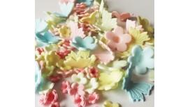 Pastelinių spalvų gėlytės su drugeliais 1