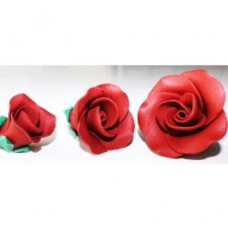Medium red rose