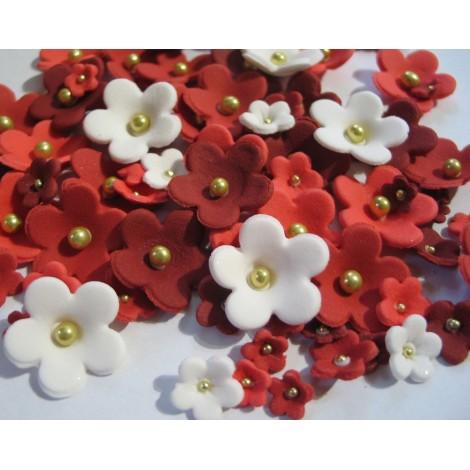 Raudonoų atspalvių ir baltos spalvos gėlės su auksiniais viduriukais