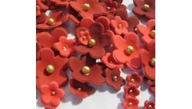 Raudonų atspalvių gėlės su auksiniais viduriukais