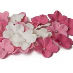 Rožinės, ryškiai rožinės, baltos gėlės su sidabriniais viduriukais