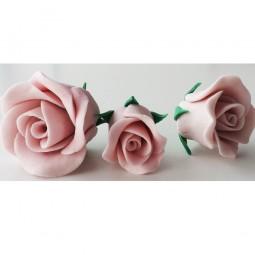 Rožinės spalvos didelė rožė