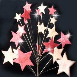 Rožinės, šviesiai rožinės blizgančios žvaigždės su vielutėmis