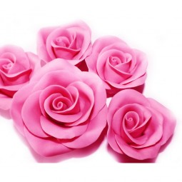 Ryškiai rožinės spalvos rožė