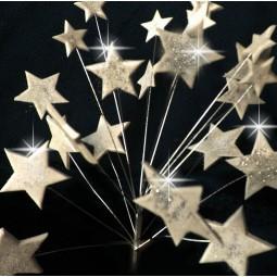 Sidabrinės blizgančios žvaigždės su vielutėmis