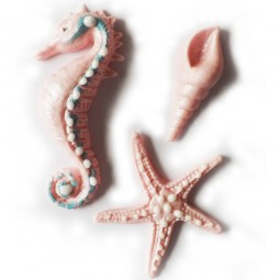 Light pink colour seashell, seahorse and sea star