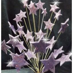 Šviesiai violetinės blizgančios žvaigždės su vielutėmis