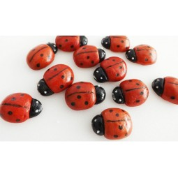Medium ladybirds