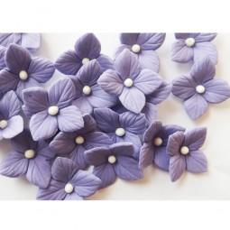 Violetinės hortenzijos