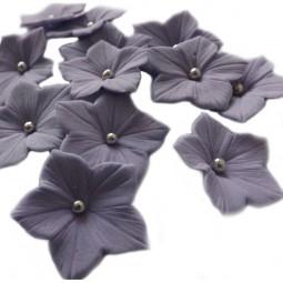 Violetinės petunijos