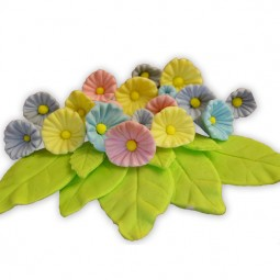 Spalvotos gėlės su lapeliais