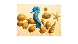 Auksinės jūros kriauklės ir mėlynas jūros arkliukas