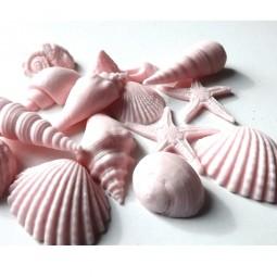 Rožinės jūros kriauklės