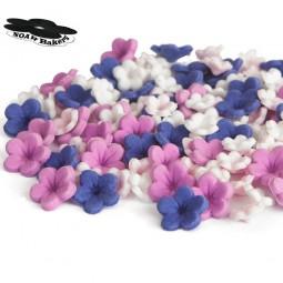 Tamsiai violetinės, tamsiai alyvinės, šviesiai rožinės ir baltos gėlytės