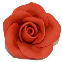 Raudonos spalvos didelė rožė