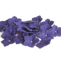Ryškiai violetinės petunijos