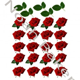 Wafer paper roses pictures