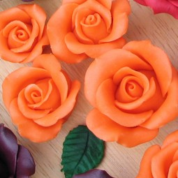 Orange chocolate rose
