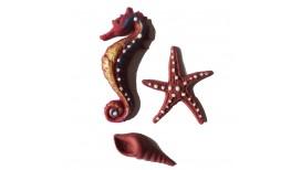 Bordo spalvos jūros kriauklė, arkliukas ir žvaigždė