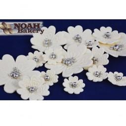 Dramblio kaulo spalvos Cosmos gėlės su sidabriniais viduriukais
