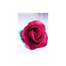 Bordo spalvos vidutinė rožė