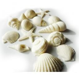 Perlinės baltos blizgančios jūros kriauklės